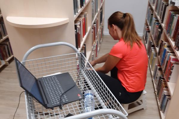 Kaj se dogaja v knjižnici Trebnje?